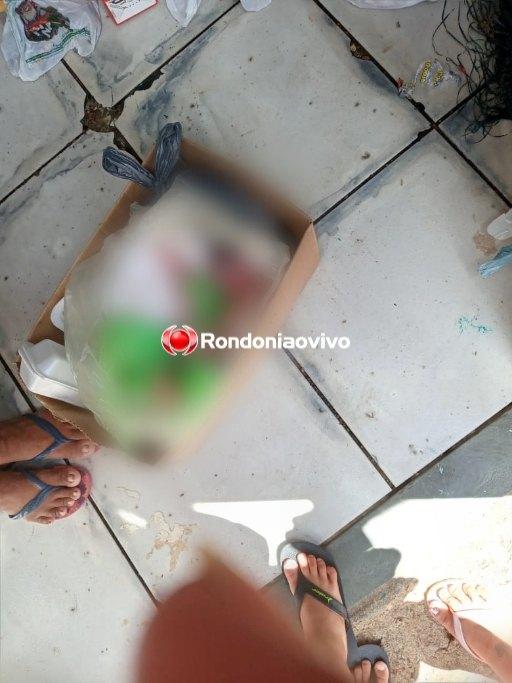 VÍDEO: Feto é encontrado jogado em lixeira no condomínio Morar Melhor