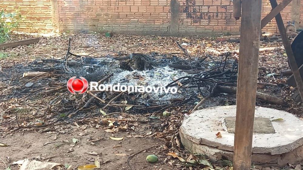 URGENTE: Homicídios prende mulher que matou homem carbonizado em fogueira