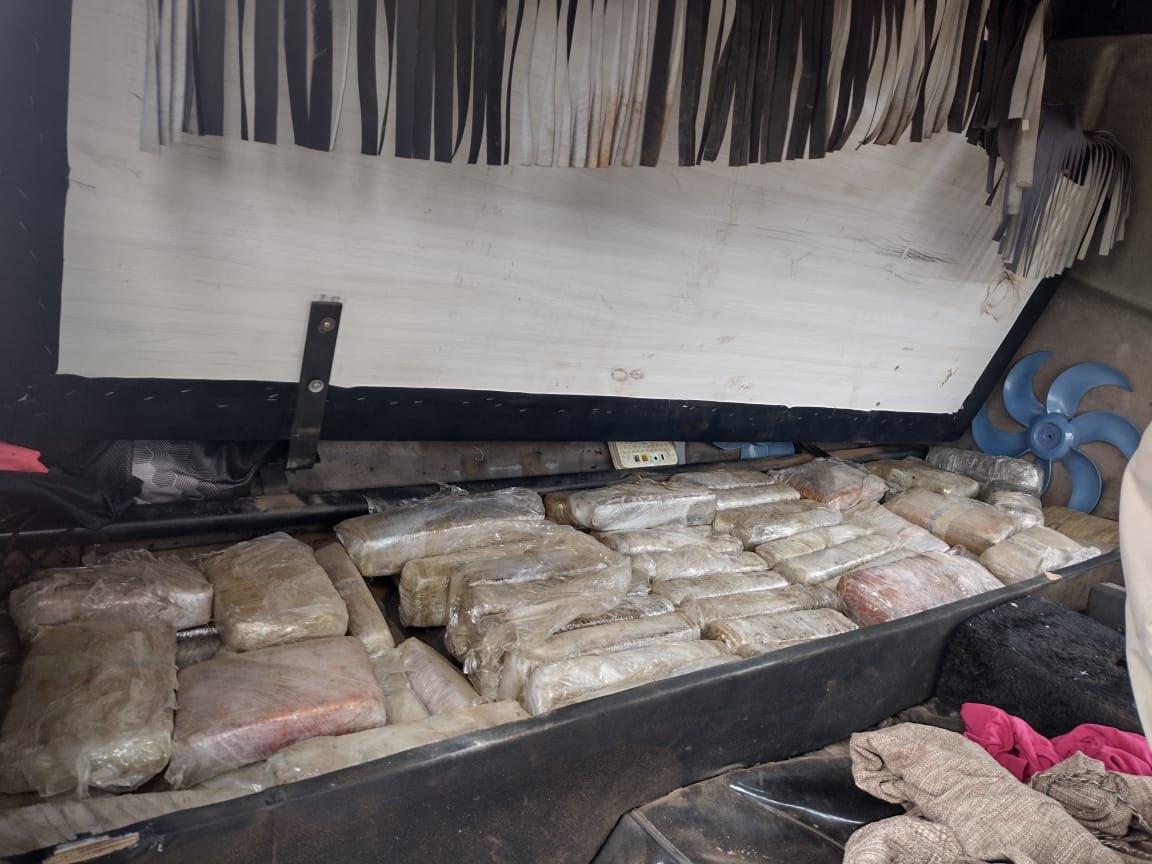 APREENSÃO MILIONÁRIA: Dupla é presa com 300 quilos de maconha Colômbia Gold na BR-364